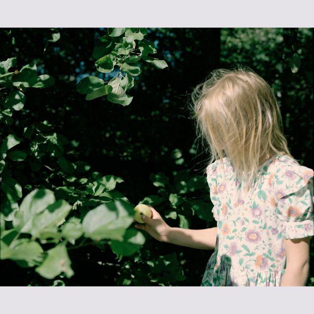 《恵比寿》エレナ・トゥタッチコワが撮ったロシアの自然に囲まれて暮らす兄妹たちのかけがえのない夏の日々