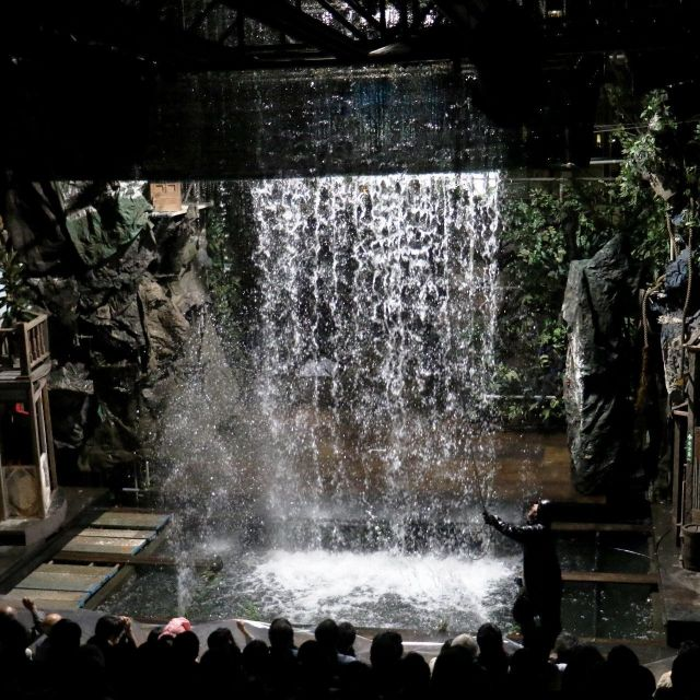 《横浜》瀧のように水が噴き出し、池に人が消える摩訶不思議でスペクタクルな「水族館劇場」 寿町で上演