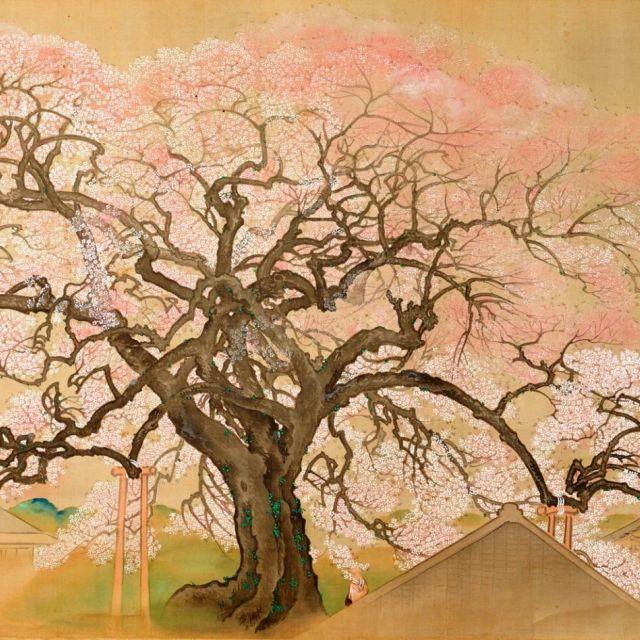《六本木1丁目》桜の絵や屏風などで春を先取り 泉屋博古館で