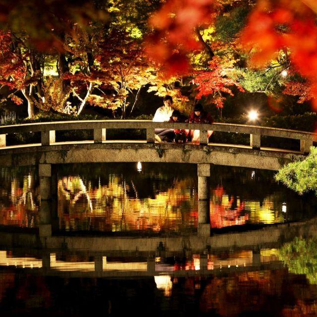 【京都紅葉めぐり2017】②もみじの永観堂 京都を代表する名所