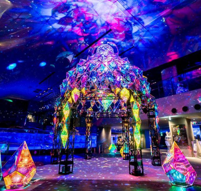 《押上》すみだ水族館で、光のオブジェ「CRYSTAL SEAWORLD~きらめく海中世界~」公開中