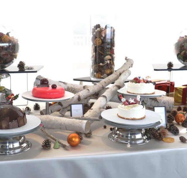 《台場》華やかなホリデーシーズンを彩る色鮮やかなクリスマスケーキの予約販売開始! 「ヒルトン東京お台場」