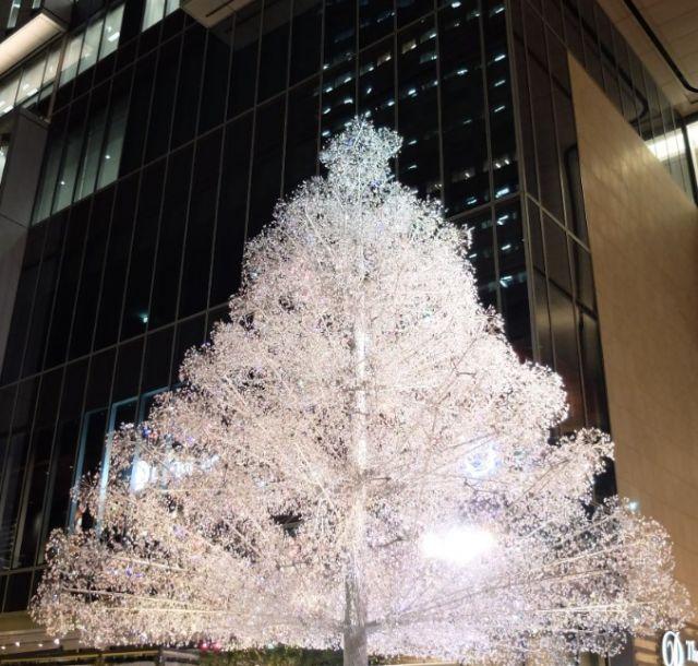 《赤坂見附》東京ガーデンテラス紀尾井町で、クリスタルツリーのイルミネーションがスタート
